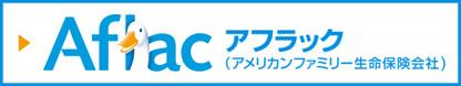 府庁生協専用アフラックホームページ